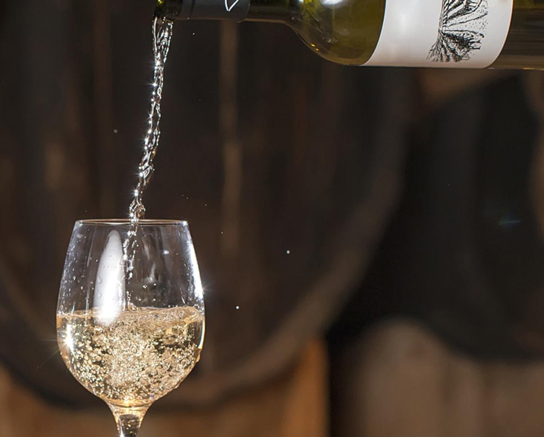 Erice DOC Wines